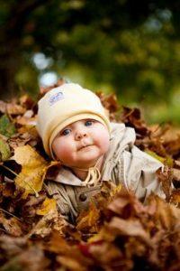 bebe folha