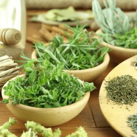 plantas-medicinais